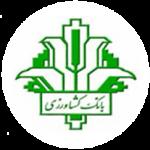 فیزیوتراپی با بیمه در تهران