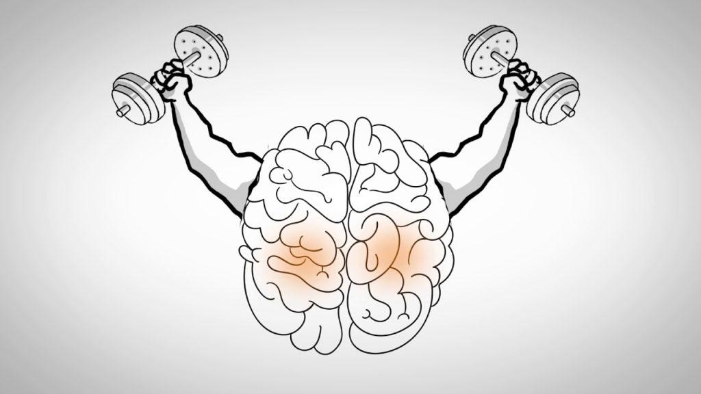 فیزیوتراپی برای بازیابی حرکات از دست رفته در سکته مغزی