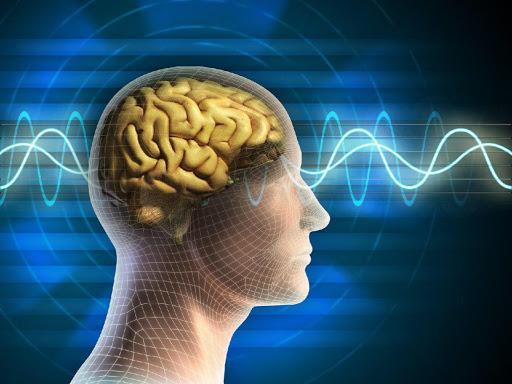 تاثیر فیزیوتراپی آسیب مغزی